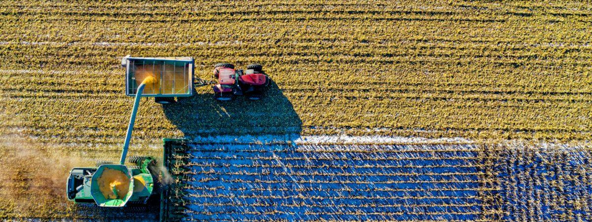 Inteligentne rolnictwo