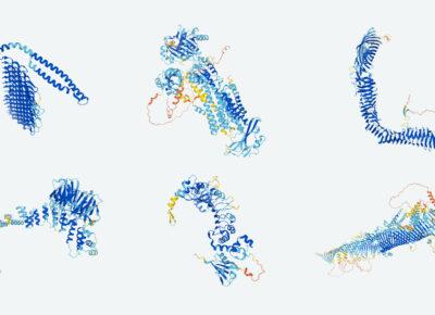 Struktury białek / Źródło: DeepMind