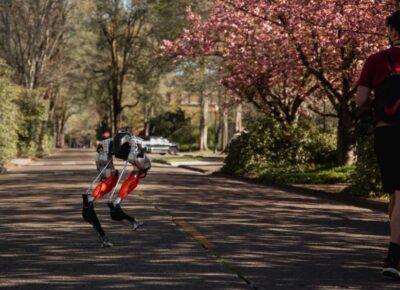 Dwunożny robot Cassie / Źródło: Oregon State University